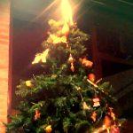 Natale al Ristornate i Ronchi ad Arquà Petrarca sui Colli Euganei