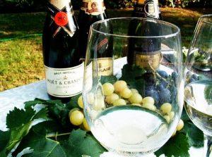 Carta dei vini ristorante I Ronchi Arquà Petrarca Colli Euganei