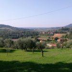 Menu primavera estate ristorante I Ronchi Arquà Petrarca Colli Euganei