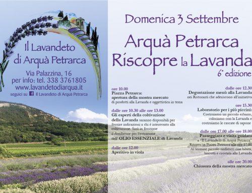 Arquà Petrarca riscopre la Lavanda